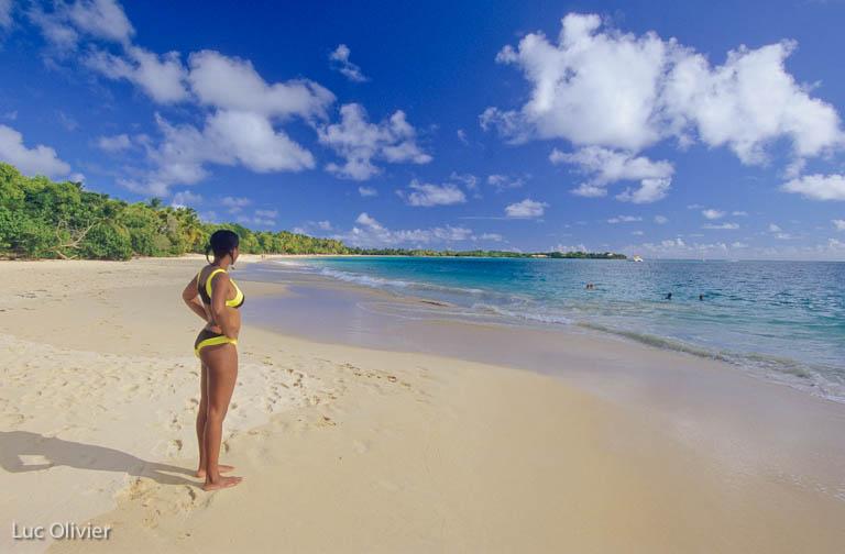 Martinique - Sainte-Anne - Grande Anse des Salines